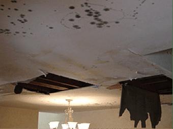 Property-Damage4