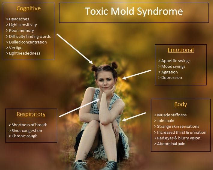 Symptoms of Toxic Black Mold Syndrome